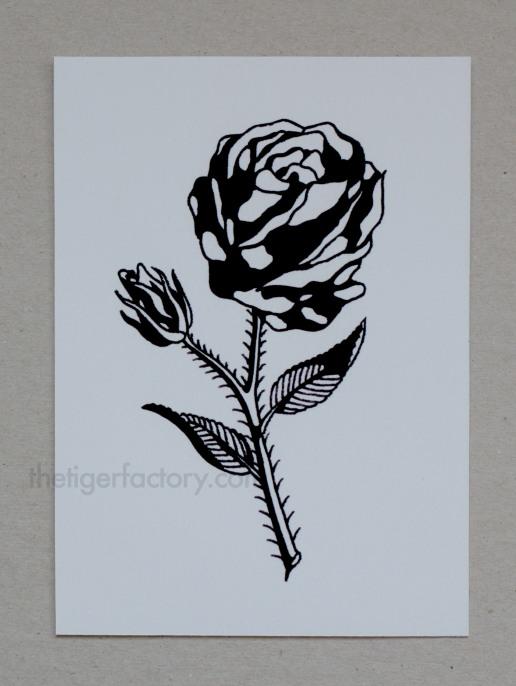Rose 4 (5x7) $10